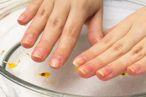 きれいな爪の画像